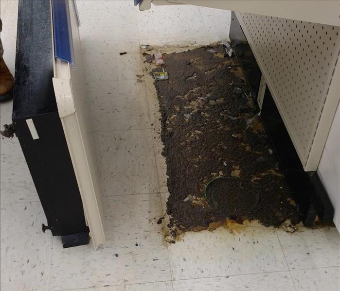 Walgreen's sewer damage clean up. Before