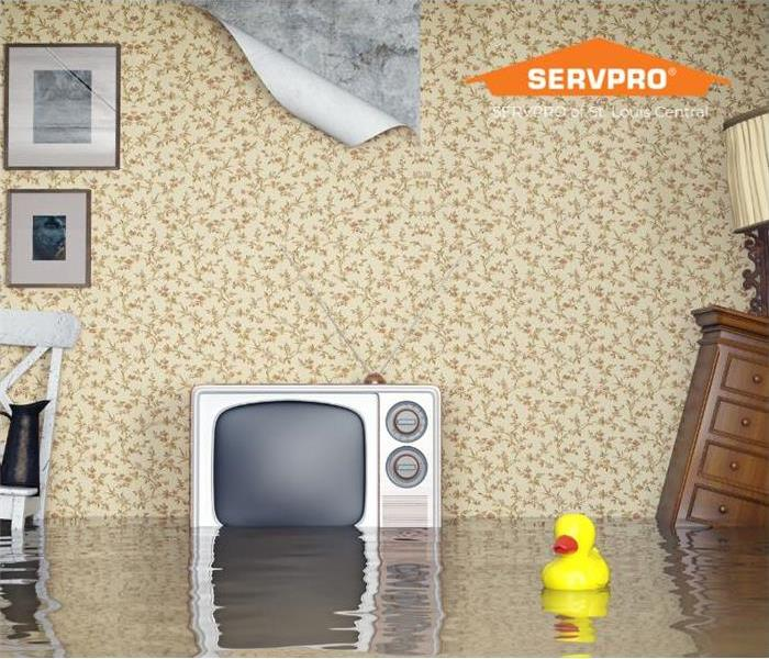 a flooded living room with a floating rubber duck in the water