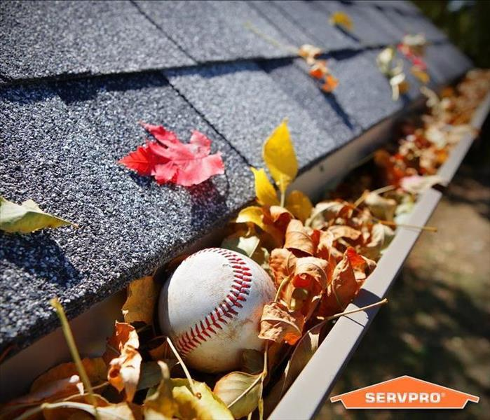 a roof with clogged gutters from leaves and a baseball