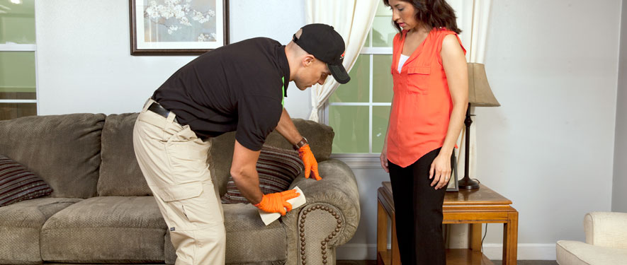 Belleville, IL carpet upholstery cleaning